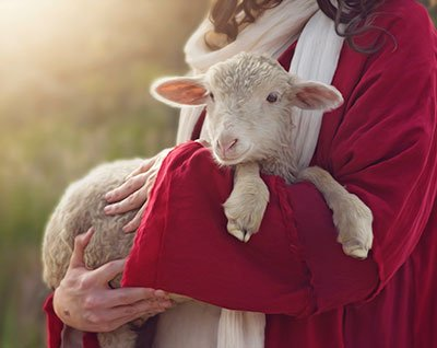 Jesus teaches us to care about the one lost sheep